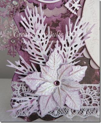 purplr poinsettia flower closeup