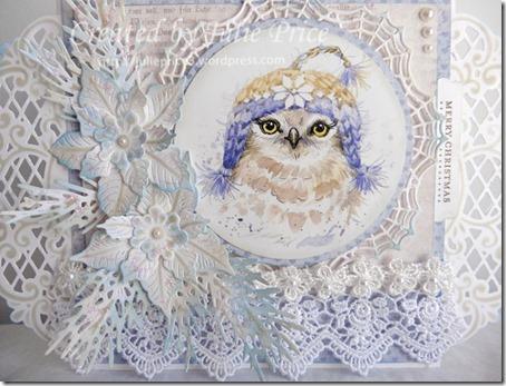 owl closeup 2