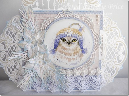 owl closeup 2a
